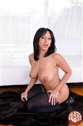 Faustine Lee sucks on a big cock in sexy black stockings