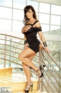 Lisa Ann exposes the goods through a tiny black dress from Brand Danger